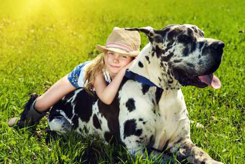 Fort Worth Veterinary Specialty cowgirl with dog